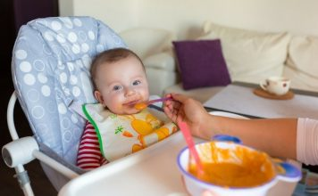 The Delicious Homemade Baby Food Ideas